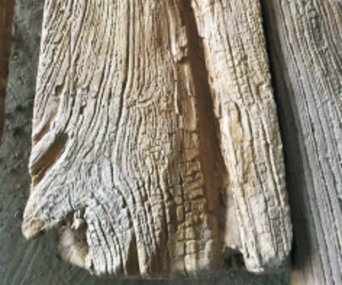 朴之原水泥防腐木