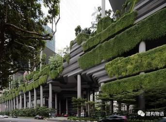 绿化也能成为立面的主角?